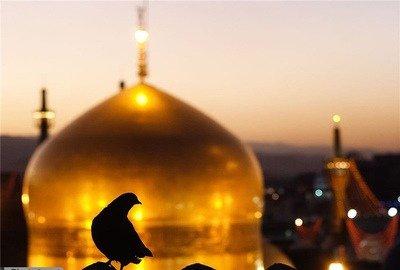 imam-reza-mashad